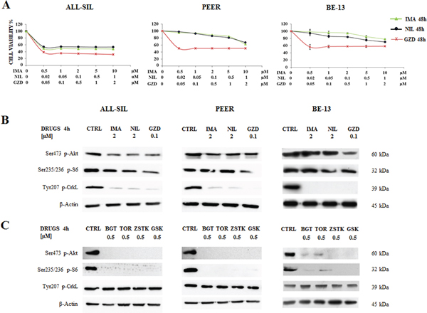 Effectiveness of Imatinib, Nilotinib and GZD824 in ALL-SIL, PEER and BE-13 cell lines.