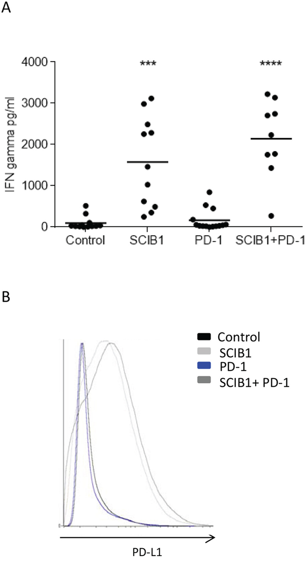 Analysis of TIL function and PD-L1 expression on tumor in mice immunized with single or combination vaccines.