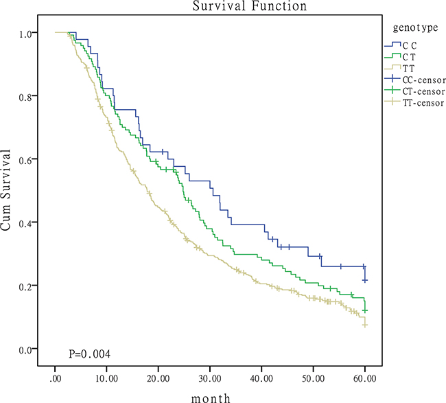 Survival curves for patients with different genotypes of miR-149.