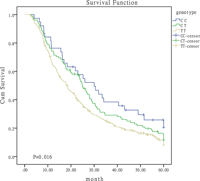 Survival curves for I/II/III patients with different genotypes of miR-149.