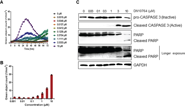 Apoptosis induction by DN10764.