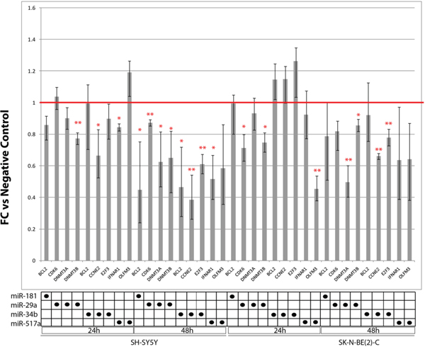 Expression of candidate miRNAs targets in SH-SY5Y and SK-N-BE(2)-C transfected with miRNAs mimics for 24 h and 48 h.