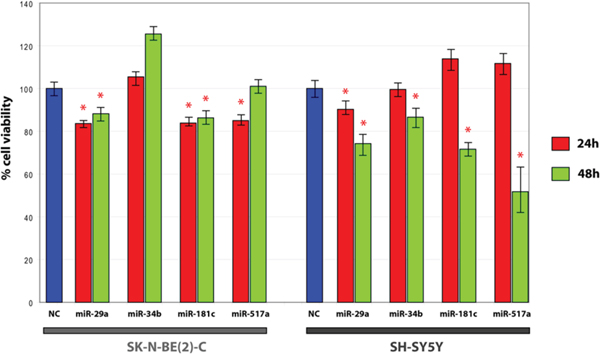 MTT assay in SH-SY5Y and SK-N-BE(2)-C transfected with candidate miRNAs mimics.