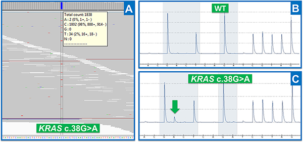 Results obtained by NGS and target-specific method.