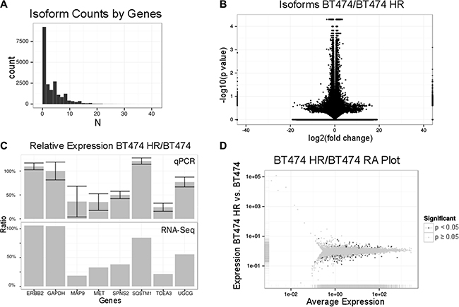RNA expression profiling of BT474 HR cells.