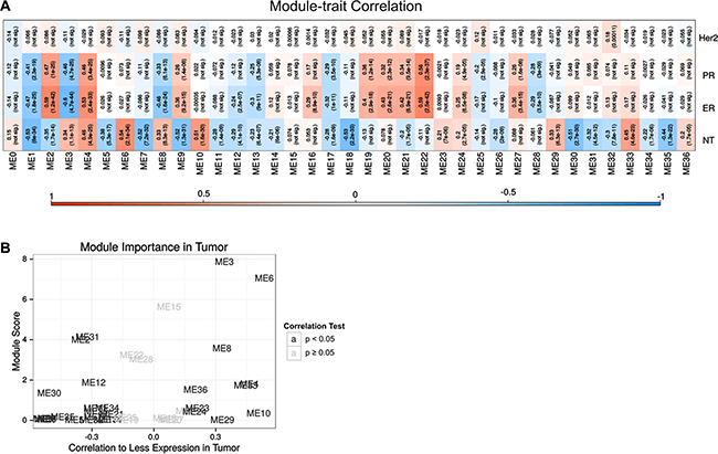 Co-expression analysis of RNA-Seq and TCGA database.