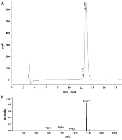 Analysis of the synthetic P9 peptides.