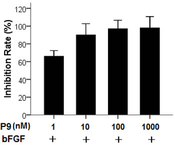 Inhibition of bFGF-stimulated proliferation of B16-F10 cells by the synthetic P9 peptides.
