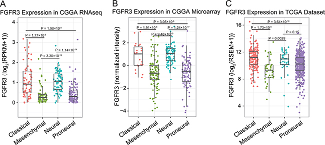 FGFR3 expression in RNA-seq dataset and microarray dataset of CGGA, and RNA-seq dataset in TCGA.