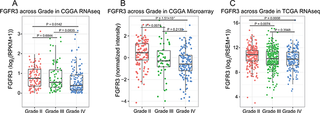 FGFR3 expression pattern across different WHO grades.