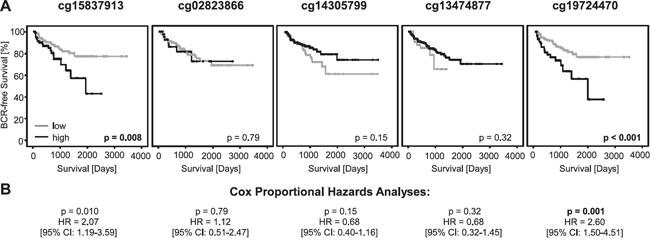 Kaplan-Meier analysis of PD-L1 DNA methylation in prostate cancer patients (training cohort).