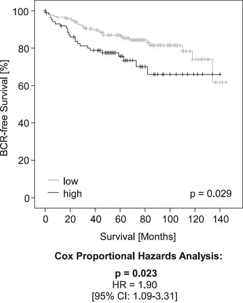 Kaplan-Meier analysis of PD-L1 DNA methylation in prostate cancer patients (validation cohort).