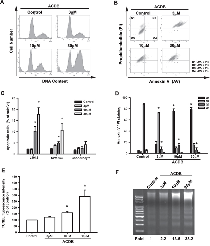 ACDB induces apoptosis in human chondrosarcoma cells.
