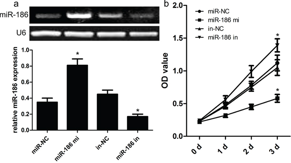 Effect of miR-186 on HGC-27 cell proliferation.