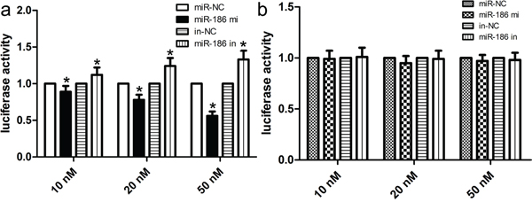 miR-186 was a direct transcriptional target of Twist1 in HGC-27 cells.