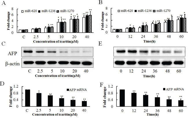 Effects of icaritin on miR-620, miR-1236, miR-1270 and AFP expression in PLC/PRF/5 cells.