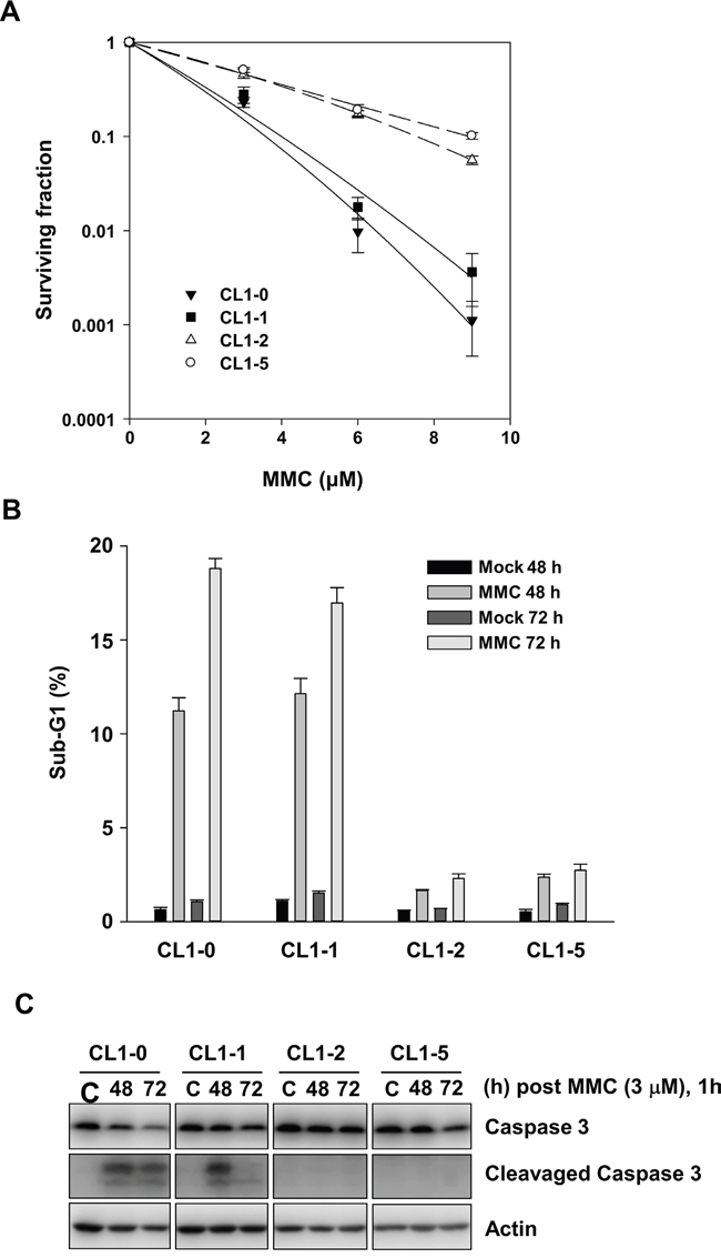 The effects of MMC on CL1-0, CL1-1, CL1-2, and CL1-5 cells.