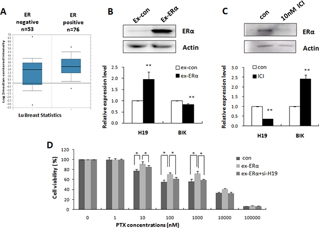 H19 mediated ERα-induced PTX resistance in breast cancer.