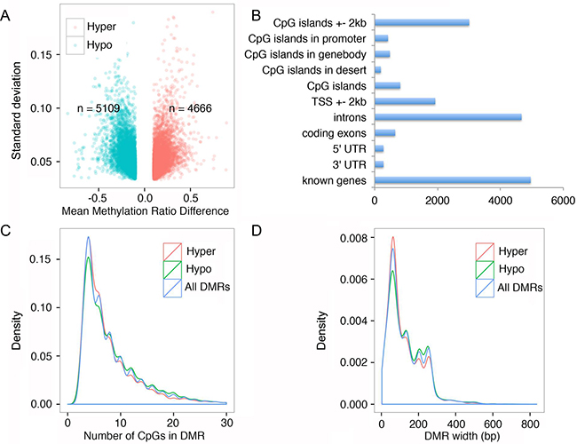 FQI1 treatment triggers alteration of genome wide DNA methylation.