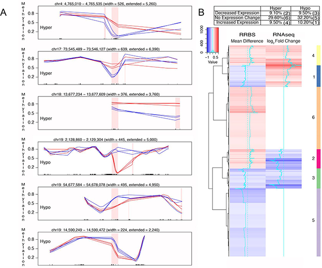 Correlation of differential DNA methylation and altered gene expression with FQI1 treatment.
