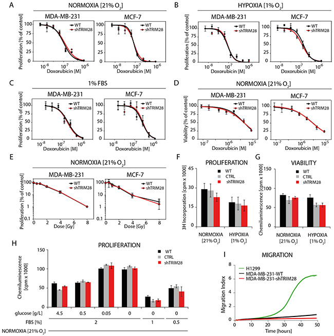 TRIM28 knockdown does not affect breast cancer cell chemo- and radioresistance in vitro.