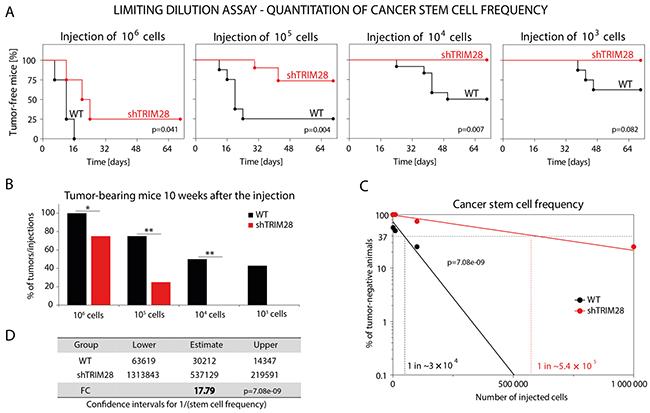 TRIM28 gene depletion reduces the number of cancer stem cells in MDA-MB-231 breast cancer xenografts.