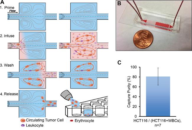 Microfluidic device design and performance.