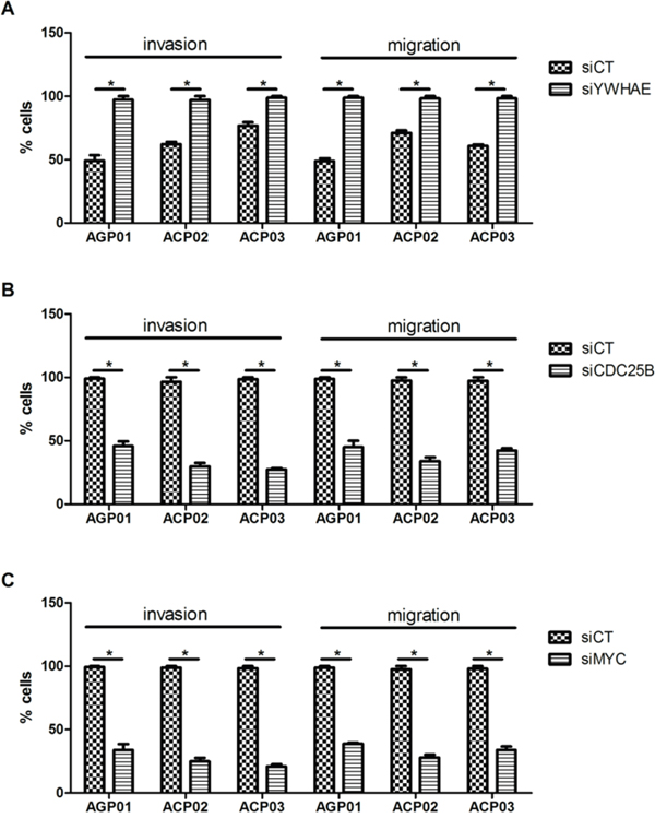Effect of si-RNA silencing on gastric cancer cell lines invasion and migration.