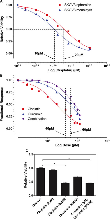 Curcumin sensitized SKOV3 spheroid to cisplatin treatment.