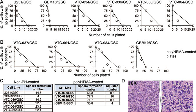 The propensity of GSCs to self-renew in vitro or to form a tumor in vivo.