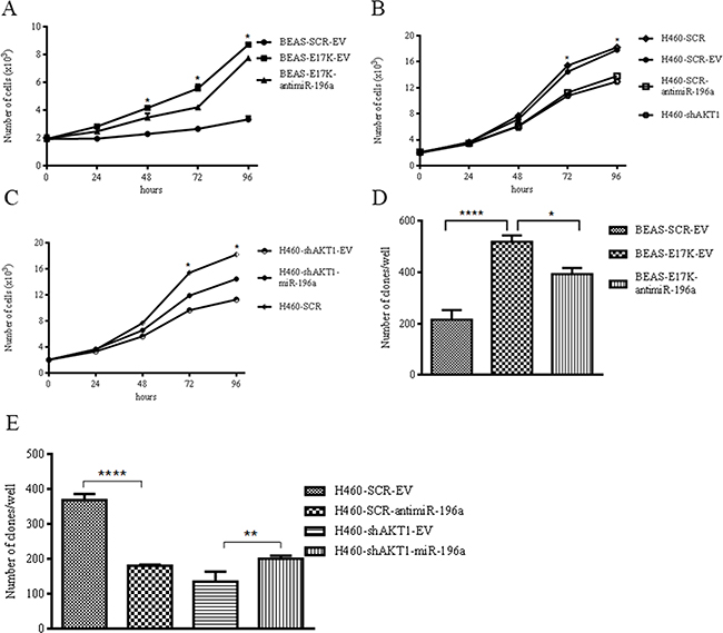 MiR-196a regulates anchorage-dependent and –independent growth of NSCLC cells.
