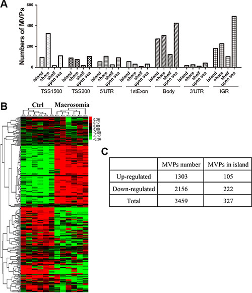 DNA methylation in genomic level altered in cord blood from macrosomia.