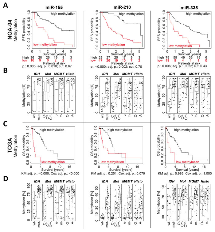 Low promoter methylation of miR-155, miR-210 and miR-335 was associated with a short patient survival.