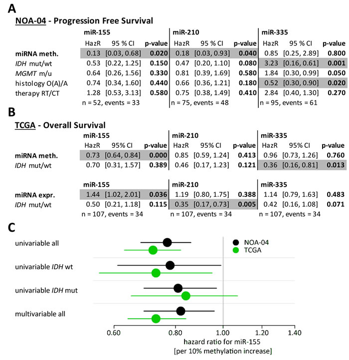miR-155 promoter methylation and expression were strong prognostic factors even in the presence of established marker.