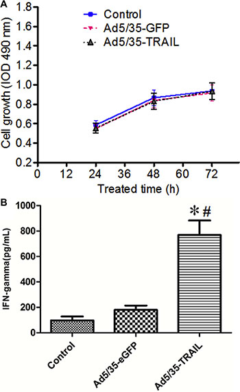Adenovirus-transduced CTL function.