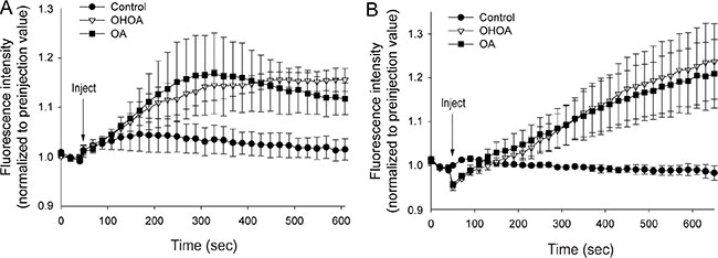 Both OHOA and OA stimulate release of calcium from intracellular stores.