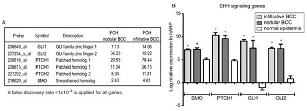 The SHH-signaling genes were up-regulated in BCC tissue.