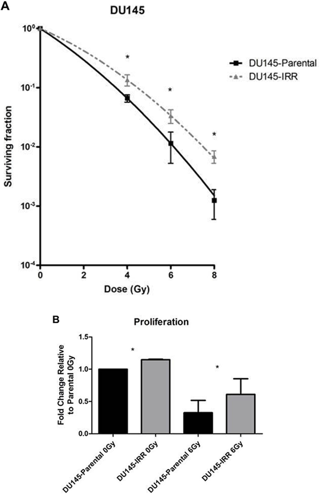 DU145 cells surviving RT are IRR and have an aggressive phenotype characterized by increased proliferation, invasive potential, and impaired G2-M cell cycle arrest.
