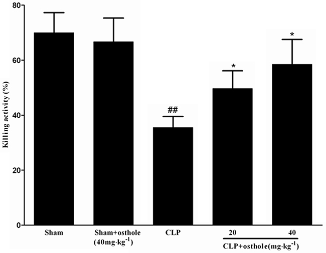 Effect of osthole on bacterial killing activity of macrophages in CLP mice.