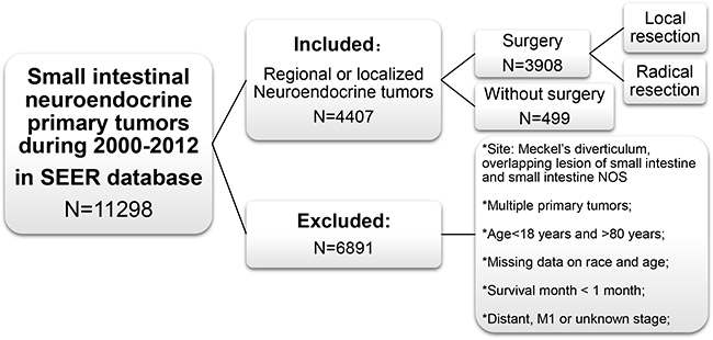 Cohort inclusion and exclusion diagram.