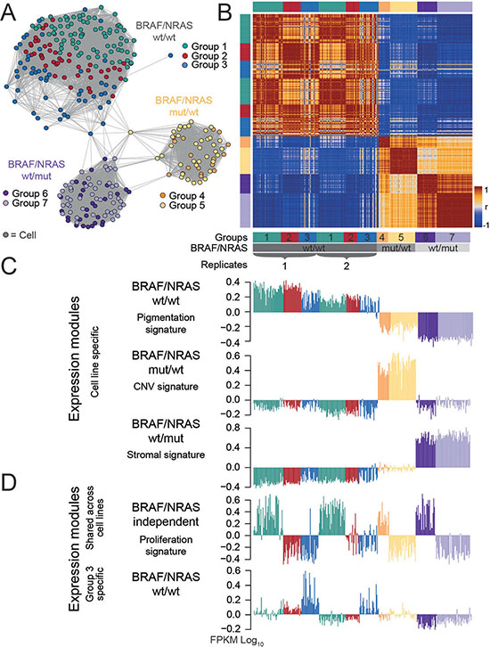 Comparative analysis reveals intertumor heterogeneity.