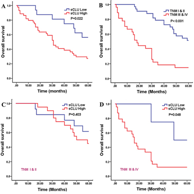 Kaplan-Meier analysis for overall survival of 60 HCC patients.
