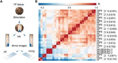 Immune Advance assay performance on FFPE versus FF samples.