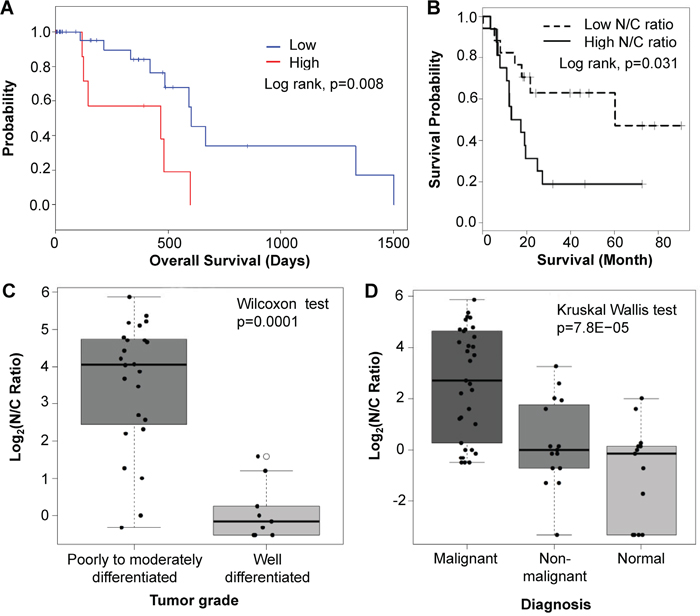 High Sema3E expression is associated with poor survival, tumor progression, and more aggressive disease.