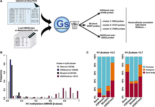 Integration of the ES cell chromatin signature parameters in DNA methylation analyses.
