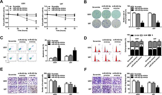 MiR-433-3p suppresses malignant behavior of glioma cells.