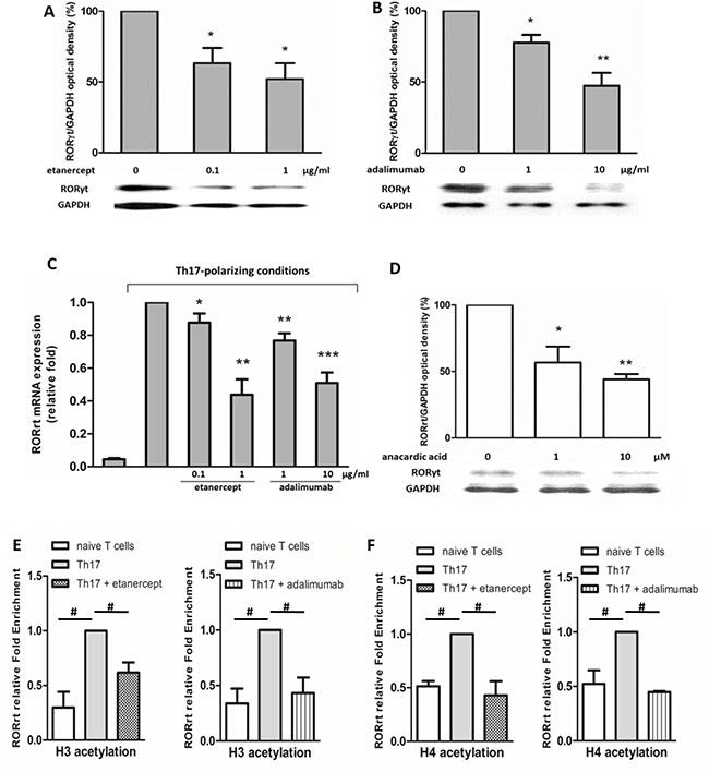 Etanercept and adalimumab downregulate RORγt expression in human Th17-polarized T cells via histone acetylation.