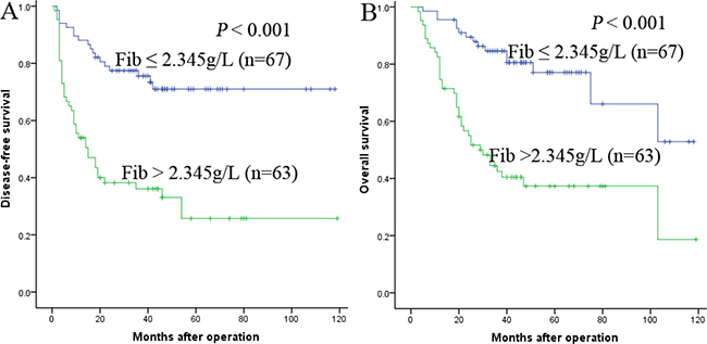 Relationship between Fib and DFS/OS of HCC patients after liver transplantation.