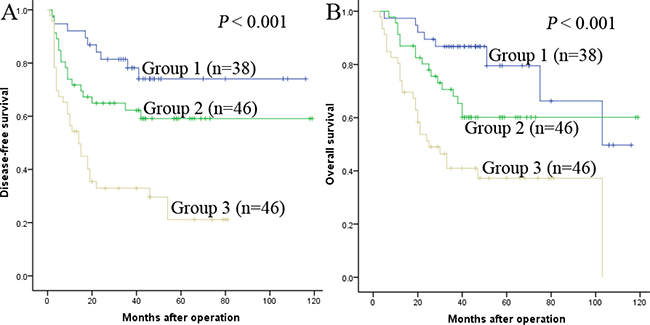 The combination of Fib and NLR was found to enhance prognostic accuracy for HCC.