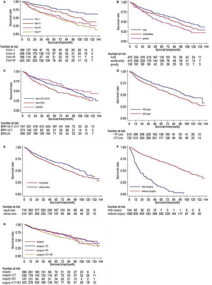 Ten-year survival of patients diagnosed with oral cancer in The First Affiliated Hospital of Fujian Medical University (Long-rank Mantel–Cox test).